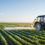 Uklanjanje korova s polja na održiv način