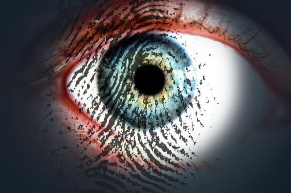Samo 26% stručnjaka vjeruje u zaštitu osobnih podataka